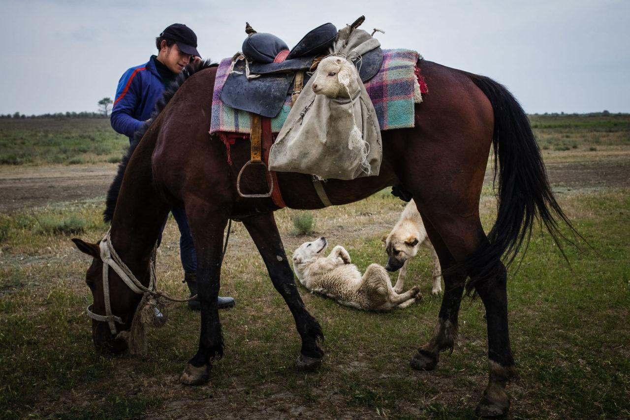 Changirej, der Sohn des Schäfers, am Telefon / Foto © Jewgenija Shulanowa