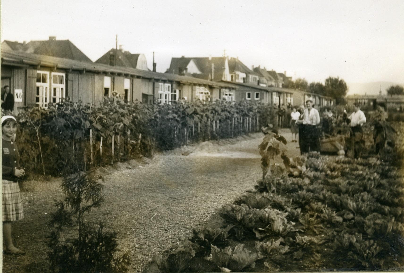 Лагерь для остарбайтеров в городе Зинген, примерно 1943 год. © Stadtarchiv Singen