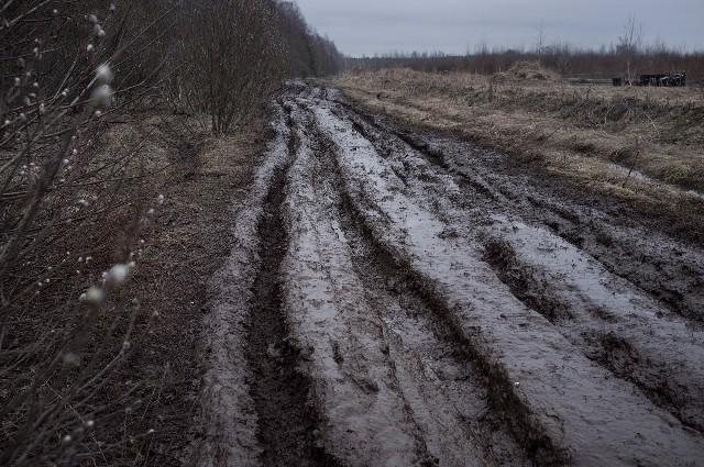 Sie hinterlassen geknicktes Gestrüpp und von tiefen Fahrspuren zerfurchte Felder