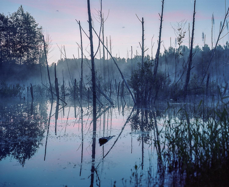 Foto © Andrey Ivanov